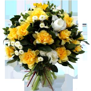 fête des grands-mères: bouquet de narcisses et matricaires