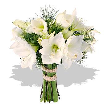 Les fleurs de novembre la tendance des fleurs for Amaryllis en bouquet
