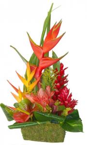 composition de fleurs exotiques