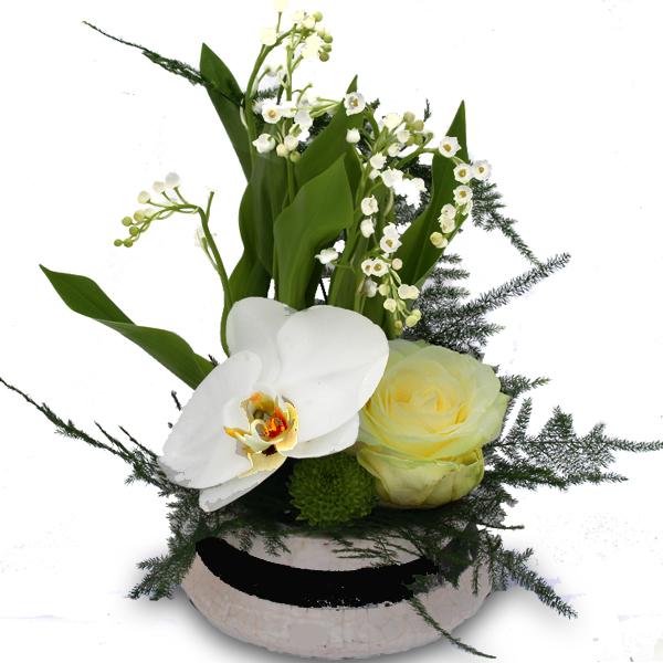 Le muguet fleur de printemps traditions et plantationle for Bouquet de fleurs muguet