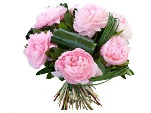 fleur fête des mères: bouquet de pivoines Sarah Bernhardt