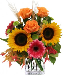 fleurs d' automne: tournesols, roses, feuilles de chênes