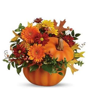 fleurs d 39 automne des bouquets l 39 esprit tellurique le. Black Bedroom Furniture Sets. Home Design Ideas