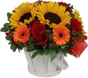 fleurs d'été: composition de tournesols, roses et germinis