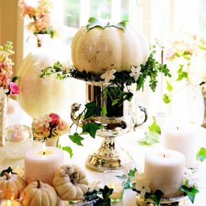fleurs et coloquintes blancs