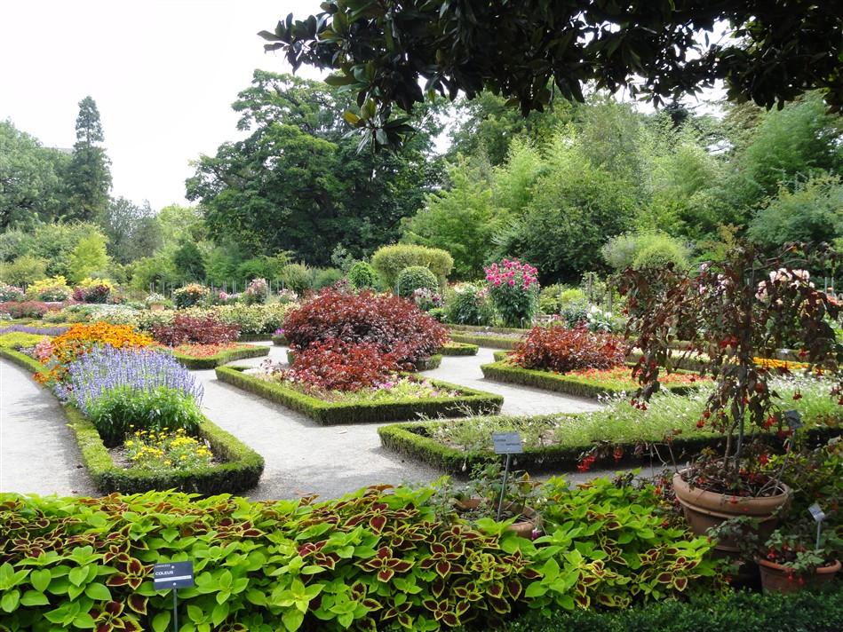 Livraison fleurs lyon faire livrer des fleurs lyonle for Jardin zoologique de lyon