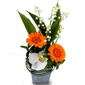 muguet du 1er mai: composition de muguet, germinis orangés, orchidée blanche