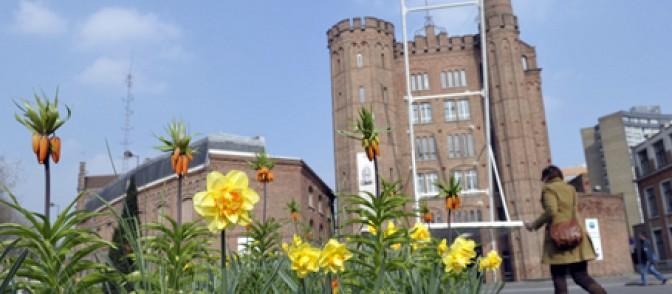 fleurs roubaix