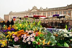 fleurs Toulouse