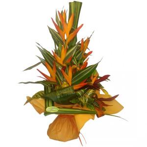 bouquet de fleurs: bouquet de strelitzias