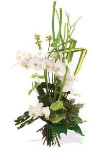 bouquet de fleurs: bouquet linéaire blanc vert
