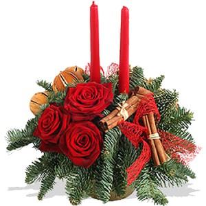No l en fleurs entre histoire et symbolesle blog fleursinfo for Amaryllis pour noel