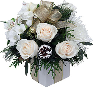 Nos Conseils Pour Offrir Des Fleurs De Noel