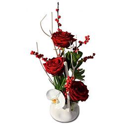 nos conseils pour offrir des fleurs de no l. Black Bedroom Furniture Sets. Home Design Ideas