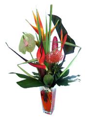 fleurs exotiques bouquet de fleurs exotiques excellence. Black Bedroom Furniture Sets. Home Design Ideas