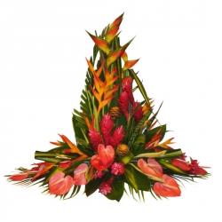 Fleurs exotiques livraison fleurs exotiques floraclic for Livraison fleurs exotiques