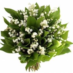 Bouquet de muguet livraison muguet 1er mai floraclic for Muguet livraison domicile