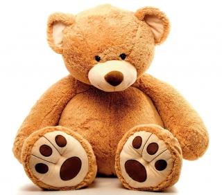 cadeau fleurs: ours en peluche