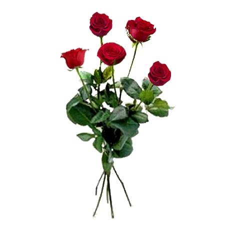 Livraison fleurs 5 grandes roses rouges floraclic for Envoyer des roses