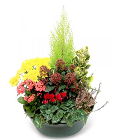 livraison fleurs deuil coupe de plantes pour cimeti re floraclic. Black Bedroom Furniture Sets. Home Design Ideas