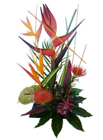 fleurs exotiques livraison de la composition florale. Black Bedroom Furniture Sets. Home Design Ideas