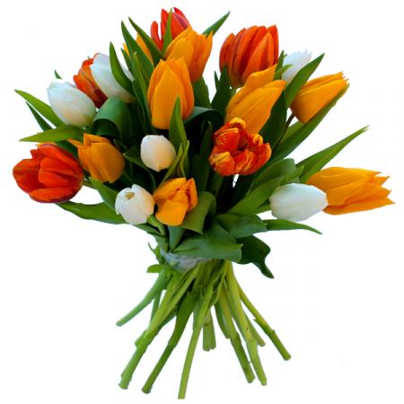Livraison fleurs de bouquet de tulipes harmonie par for Bouquet de tulipes