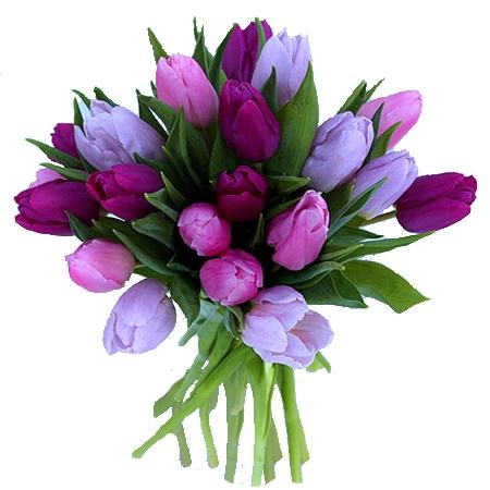 Livraison fleurs de bouquet de tulipes roses par floraclic for Livraison tulipes