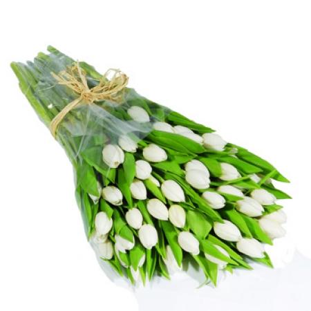 Livraison fleurs bouquet de tulipes blanches floraclic for Livraison tulipes