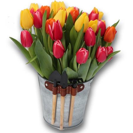 Livraison fleurs bouquet seau de tulipes fleurs f te for Livraison tulipes