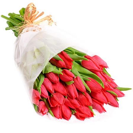 Livraison fleurs bouquet de tulipes rouges par floraclic for Livraison tulipes
