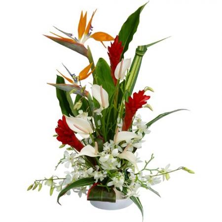 Livraison fleurs exotiques composition exotique aloha for Bouquet de fleurs guadeloupe