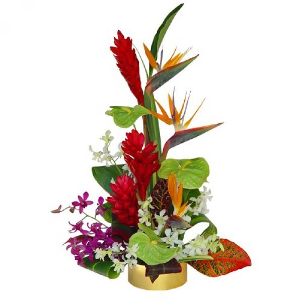 Livraison fleurs exotiques composition tropicale hawa for Bouquet de fleurs guadeloupe